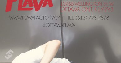 Ottawa's only street dance studio presents Five for Flava