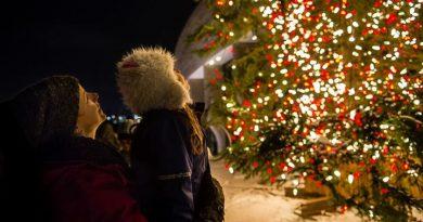 Cérémonie D'illumination de notre arbre de Noël