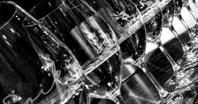 Dégustation de vins de l'Amérique du Sud